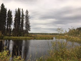 """Main Photo: 4371 BLACKWATER Road in Quesnel: Bouchie Lake House for sale in """"BLACKWATER - NAZKO"""" (Quesnel (Zone 28))  : MLS®# R2402787"""