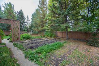 Photo 30: 6435 14 Avenue in Edmonton: Zone 29 House for sale : MLS®# E4195901