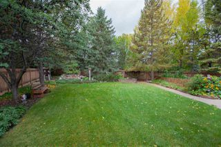 Photo 26: 6435 14 Avenue in Edmonton: Zone 29 House for sale : MLS®# E4195901