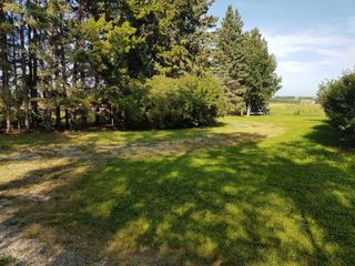 Photo 9: 303 Township: Rural Mountain View County Land for sale : MLS®# C4303606