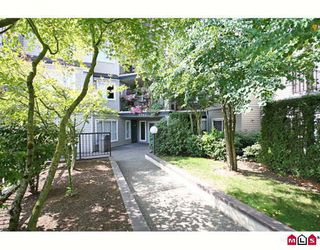 """Photo 1: 411 5759 GLOVER Road in Langley: Langley City Condo for sale in """"COLLEGE COURT"""" : MLS®# F2920211"""