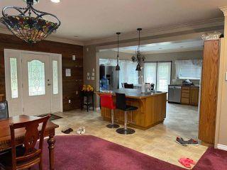 Photo 40: 27372 DEWDNEY TRUNK Road in Maple Ridge: Northeast House for sale : MLS®# R2528451