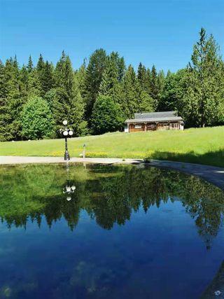 Photo 14: 27372 DEWDNEY TRUNK Road in Maple Ridge: Northeast House for sale : MLS®# R2528451