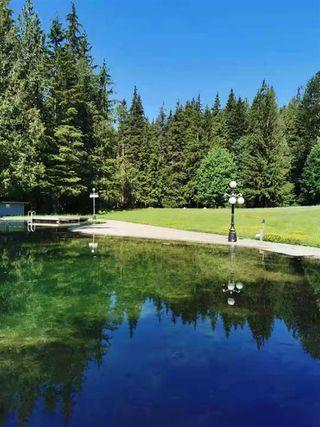Photo 12: 27372 DEWDNEY TRUNK Road in Maple Ridge: Northeast House for sale : MLS®# R2528451