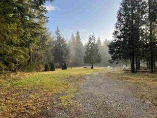 Photo 29: 27372 DEWDNEY TRUNK Road in Maple Ridge: Northeast House for sale : MLS®# R2528451