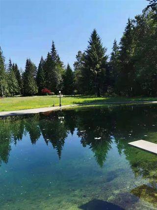 Photo 13: 27372 DEWDNEY TRUNK Road in Maple Ridge: Northeast House for sale : MLS®# R2528451