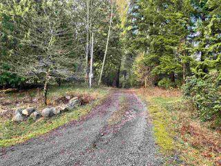 Photo 28: 27372 DEWDNEY TRUNK Road in Maple Ridge: Northeast House for sale : MLS®# R2528451