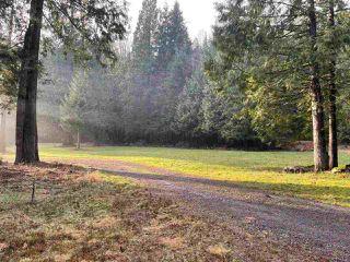 Photo 32: 27372 DEWDNEY TRUNK Road in Maple Ridge: Northeast House for sale : MLS®# R2528451