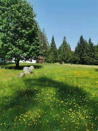 Photo 11: 27372 DEWDNEY TRUNK Road in Maple Ridge: Northeast House for sale : MLS®# R2528451