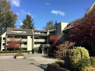 Main Photo: 417 1210 PACIFIC Street in Coquitlam: North Coquitlam Condo for sale : MLS®# R2449020