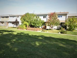 Photo 32: 7 Garden Crescent: St. Albert Attached Home for sale : MLS®# E4215389