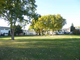 Photo 33: 7 Garden Crescent: St. Albert Attached Home for sale : MLS®# E4215389