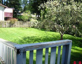 Photo 6: 3800 204TH ST in Langley: Brookswood Langley House for sale : MLS®# F2608730