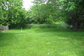 Photo 7: 574 North Street in Beaverton: House (Backsplit 3) for sale (N24: BEAVERTON)  : MLS®# N1566467