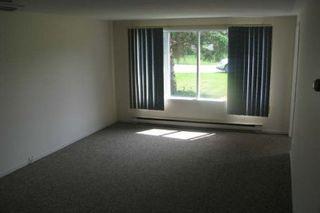 Photo 4: 574 North Street in Beaverton: House (Backsplit 3) for sale (N24: BEAVERTON)  : MLS®# N1566467