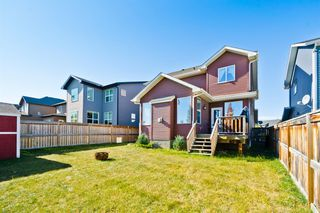 Photo 29: 224 Coopers Hill SW: Airdrie Detached for sale : MLS®# A1041538