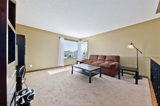 Photo 24: 224 Coopers Hill SW: Airdrie Detached for sale : MLS®# A1041538