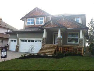 """Photo 1: 23870 106TH Avenue in Maple Ridge: Albion House for sale in """"FALCON BLUFF"""" : MLS®# V855111"""
