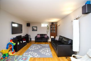 Photo 21: 3815 111A Street in Edmonton: Zone 16 House for sale : MLS®# E4167055