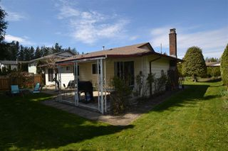 Photo 15: 33490 KIRK Avenue in Abbotsford: Poplar House for sale : MLS®# R2455265