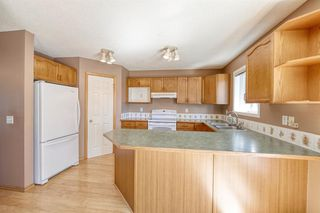 Photo 16: 172 ERIN MEADOW Way SE in Calgary: Erin Woods Detached for sale : MLS®# A1028932