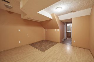 Photo 35: 172 ERIN MEADOW Way SE in Calgary: Erin Woods Detached for sale : MLS®# A1028932
