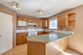 Photo 17: 172 ERIN MEADOW Way SE in Calgary: Erin Woods Detached for sale : MLS®# A1028932