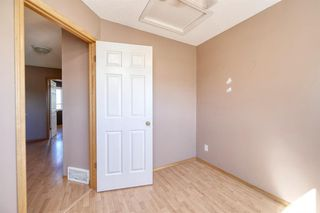 Photo 28: 172 ERIN MEADOW Way SE in Calgary: Erin Woods Detached for sale : MLS®# A1028932
