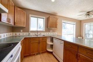 Photo 19: 172 ERIN MEADOW Way SE in Calgary: Erin Woods Detached for sale : MLS®# A1028932