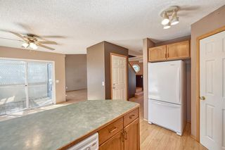 Photo 21: 172 ERIN MEADOW Way SE in Calgary: Erin Woods Detached for sale : MLS®# A1028932