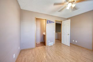 Photo 24: 172 ERIN MEADOW Way SE in Calgary: Erin Woods Detached for sale : MLS®# A1028932