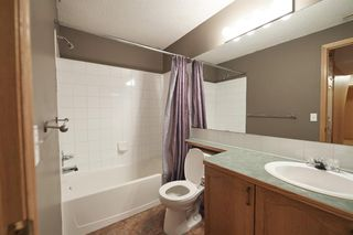 Photo 41: 172 ERIN MEADOW Way SE in Calgary: Erin Woods Detached for sale : MLS®# A1028932