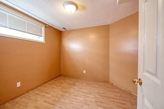 Photo 39: 172 ERIN MEADOW Way SE in Calgary: Erin Woods Detached for sale : MLS®# A1028932