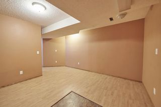 Photo 38: 172 ERIN MEADOW Way SE in Calgary: Erin Woods Detached for sale : MLS®# A1028932