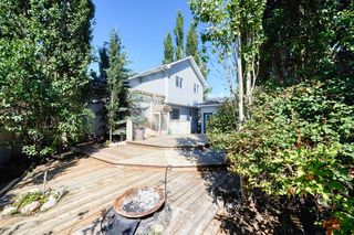 Photo 5: 172 ERIN MEADOW Way SE in Calgary: Erin Woods Detached for sale : MLS®# A1028932