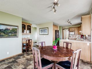 Photo 10: 224074 260A Range: Carseland Detached for sale : MLS®# A1025654