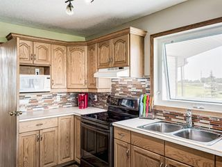 Photo 13: 224074 260A Range: Carseland Detached for sale : MLS®# A1025654