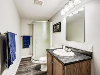 Photo 34: 224074 260A Range: Carseland Detached for sale : MLS®# A1025654