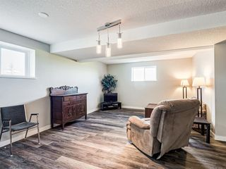 Photo 26: 224074 260A Range: Carseland Detached for sale : MLS®# A1025654