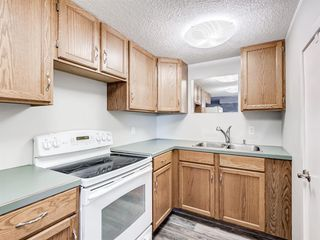 Photo 30: 224074 260A Range: Carseland Detached for sale : MLS®# A1025654