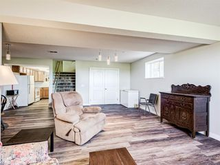 Photo 27: 224074 260A Range: Carseland Detached for sale : MLS®# A1025654