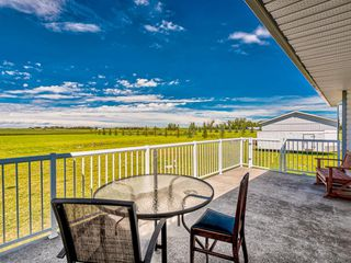 Photo 39: 224074 260A Range: Carseland Detached for sale : MLS®# A1025654