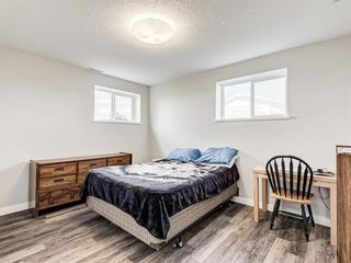 Photo 31: 224074 260A Range: Carseland Detached for sale : MLS®# A1025654