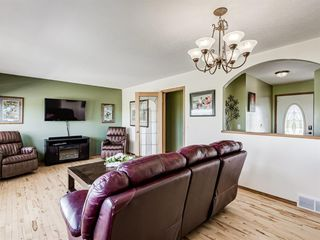 Photo 16: 224074 260A Range: Carseland Detached for sale : MLS®# A1025654