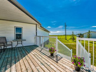 Photo 36: 224074 260A Range: Carseland Detached for sale : MLS®# A1025654