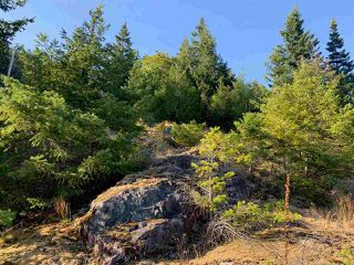 Photo 9: LOT 1 4622 SINCLAIR BAY Road in Garden Bay: Pender Harbour Egmont Land for sale (Sunshine Coast)  : MLS®# R2490916