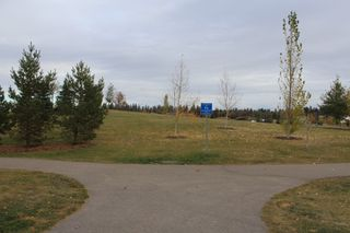Photo 35: 64 MEADOWLAND Way: Spruce Grove House for sale : MLS®# E4222707