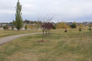 Photo 33: 64 MEADOWLAND Way: Spruce Grove House for sale : MLS®# E4222707