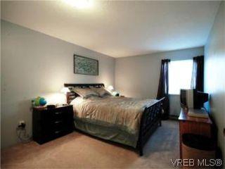 Photo 13: 208 2757 Quadra St in VICTORIA: Vi Hillside Condo for sale (Victoria)  : MLS®# 517322