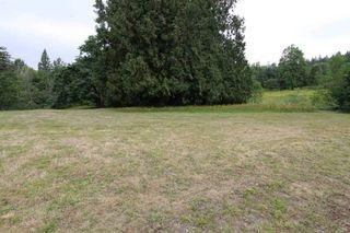 Photo 11: 26625 96 Avenue in Maple Ridge: Thornhill MR House for sale : MLS®# R2410238